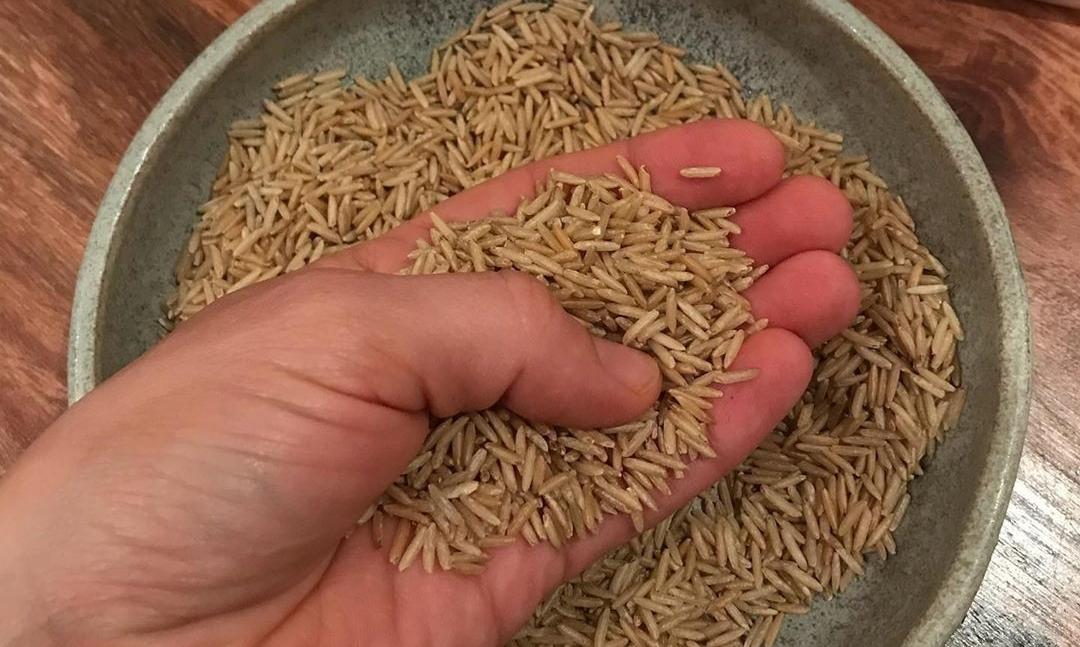 सरकार ने एफसीआई को दिया पोषक तत्व युक्त चावल की आपूर्ति बढ़ाने का निर्देश