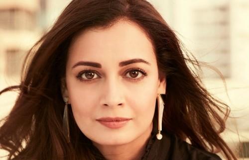 फिल्म 'वाइल्ड डॉग' तेलुगू भाषा का अच्छा रिविजन था : दीया मिर्जा