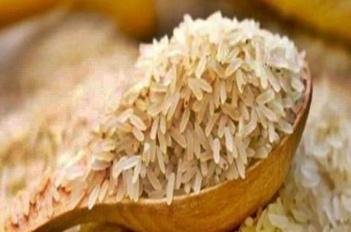 अब सिंगापुर में अपनी खुशबू और स्वाद का जलवा दिखाएगा कालानमक चावल