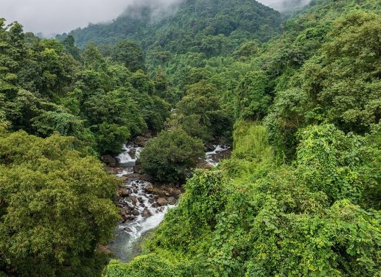 केरल पर्यटन ने पर्यटकों को लुभाने के लिए 'बायो-बबल' मॉडल लॉन्च किया
