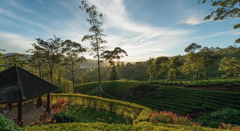 श्रीलंका में पर्यटन को बढ़ावा देने के लिए विदेशों में प्रचार गतिविधियों की योजना बनाई